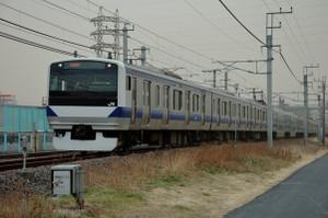 Fujisirotoride01