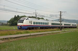 Shirayukiibarame01