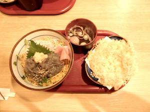 Shirasudon01